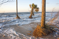 High Tide, Daufuskie Island